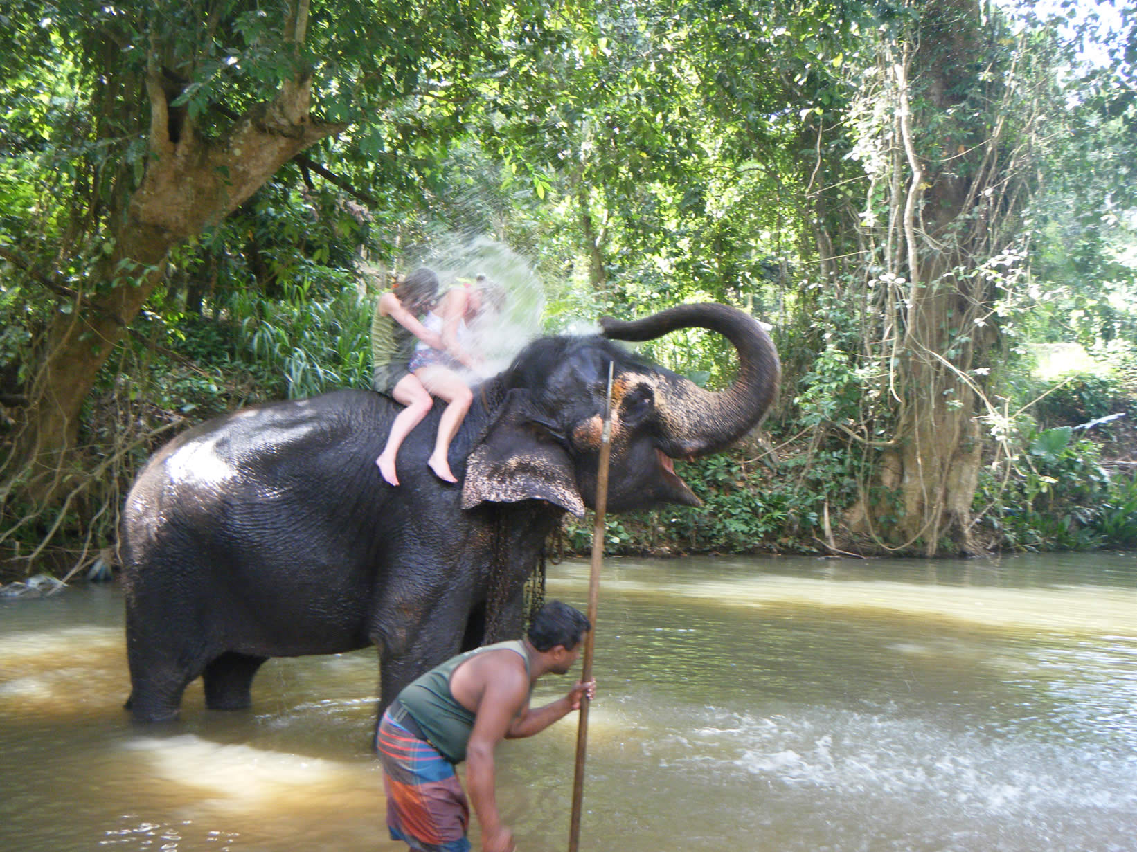 Travel blog: A Serendipitous Sri Lankan Adventure