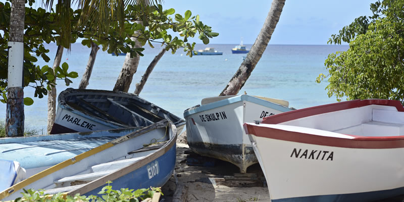 Travel blog: Discover the Real Barbados with The Atlantis Hotel & Little Good Harbour