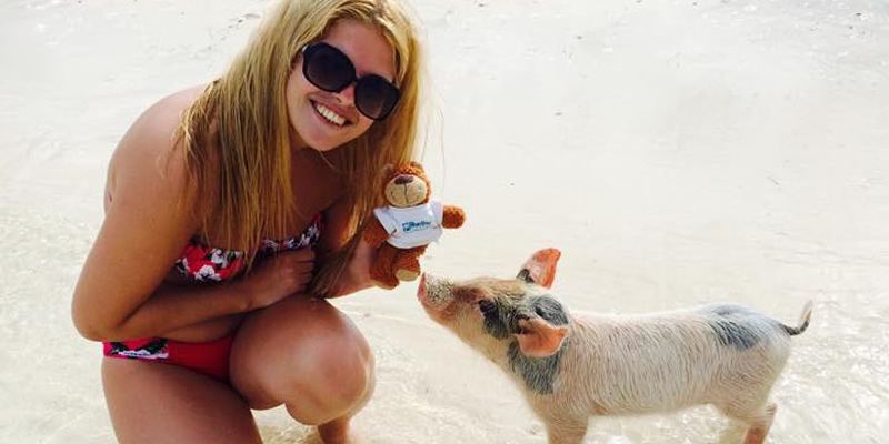 Travel blog: Did you know pigs in the Bahamas swim?
