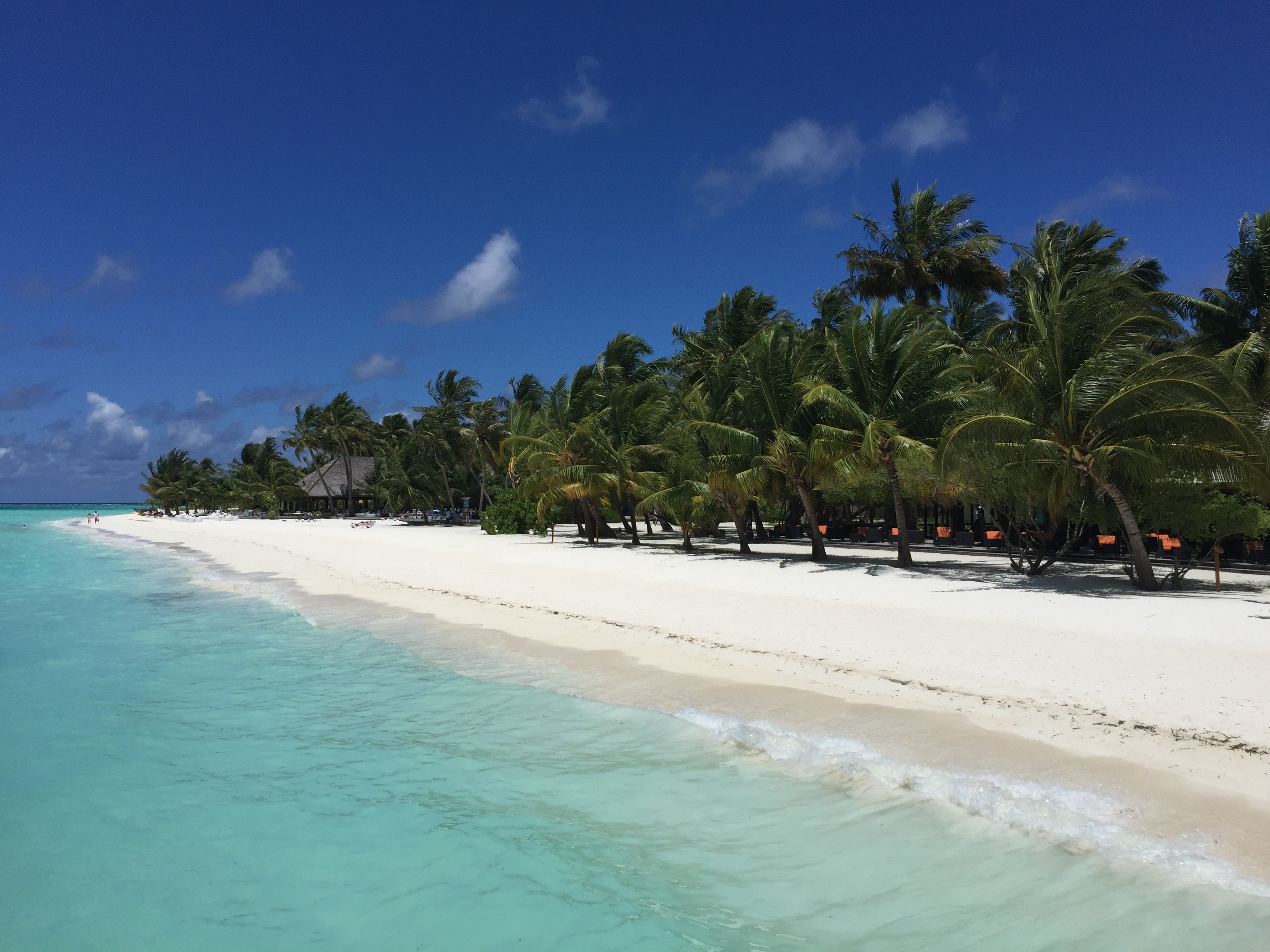 Travel blog: Maldives: The Power of Fives – Day 3 Meeru Island Resort & Spa
