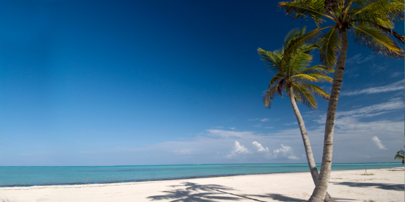 Travel blog: The Essential Travel Guide to the Dominican Republic