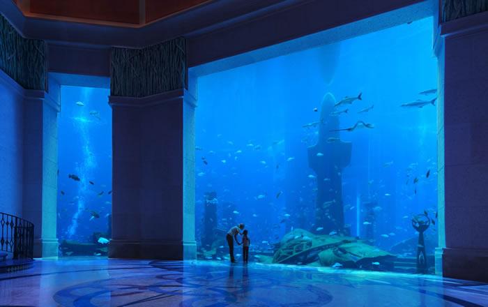 atlantis the palm fish tank