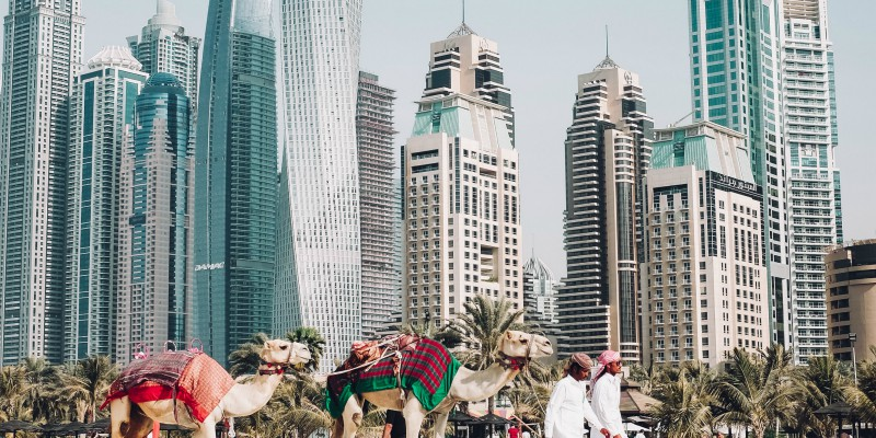 Discover Dubai with Tropical Warehouse at: https://tropicalwarehouse.co.uk/holidays/dubai?blg&sort=price#hotels
